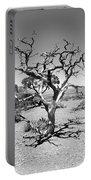 Tree At Cedar Ridge Bw Portable Battery Charger
