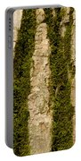 Tree Bark Mossy 4 C Portable Battery Charger