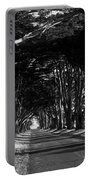 Tree Canopy Promenade Road Drive . 7d9977 . Black And White Portable Battery Charger