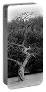 Tree Dancer Portable Battery Charger