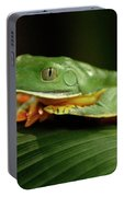 Tree Frog 1 Portable Battery Charger