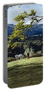 Tree In A Field, Great Sugar Loaf Portable Battery Charger