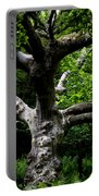 Tree In Denmark Portable Battery Charger
