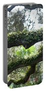 Tree Of Life Panorama Portable Battery Charger