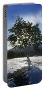 Tree On A Snow Covered Landscape Portable Battery Charger