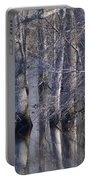 Tree Reflection Abstract Portable Battery Charger