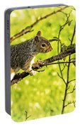 Tree Visitor Portable Battery Charger