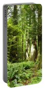 Trees At Cathedral Grove Portable Battery Charger