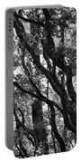 Trees Beautiful Trees Portable Battery Charger