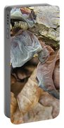 Tremella Mesenterica - Brown Brain Fungus Portable Battery Charger