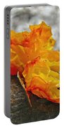 Tremella Mesenterica - Orange Brain Fungus Portable Battery Charger