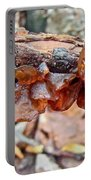 Tremella Mesenterica - Reddish Brown Brain Fungus Portable Battery Charger