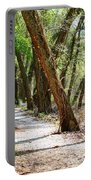 Trestle Walk Portable Battery Charger