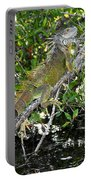 Tropical Iguana Portable Battery Charger
