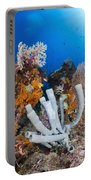 Tube Sponge On Coral Reef In Raja Portable Battery Charger