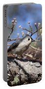 Tufted Titmouse - Always Alert Portable Battery Charger