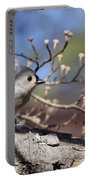 Tufted Titmouse - Bird - Color In Shadows Portable Battery Charger