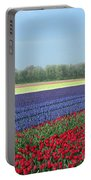 Tulip And Hyacinth Fields In Holland. Panorama Portable Battery Charger