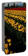 Tulip Fields Forever Portable Battery Charger