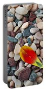 Tulip Petal And Wet Stones Portable Battery Charger