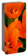 Tulip Trio Portable Battery Charger