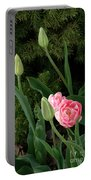 Tulips And Evergreen Portable Battery Charger