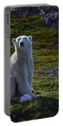 Tundra Bear Portable Battery Charger