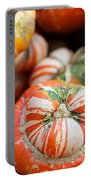 Turban Squash Portable Battery Charger