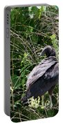 Turkey Vulture - Buzzard Portable Battery Charger by EricaMaxine  Price