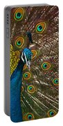 Turquoise And Gold Wonder Portable Battery Charger
