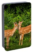 Twins Portable Battery Charger