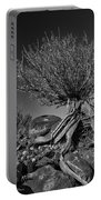 Twisted Beauty - Bw Portable Battery Charger by Christopher Holmes