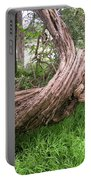 Twisted Tree 1123 Portable Battery Charger