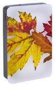 Two Autumn Maple Leaves  Portable Battery Charger