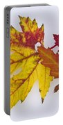 Two Autumn Maple Leaves  Portable Battery Charger by James BO  Insogna