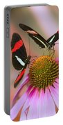Two Colorful Butterflies On Cone Flower Portable Battery Charger