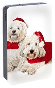 Two Cute Dogs In Santa Outfits Portable Battery Charger