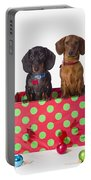 Two Dachshund Puppies Inside A Polka Portable Battery Charger