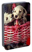 Two Dalmatian Puppies Portable Battery Charger