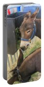 Two Donkeys Eating Portable Battery Charger by Donna Munro