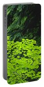 Umbrella Of Trees In Forest Portable Battery Charger