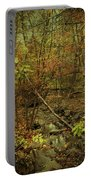 Unami Creek Feeder Stream In Autumn - Green Lane Pa Portable Battery Charger