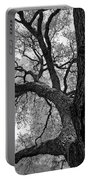 Up Tree Portable Battery Charger