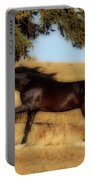 Uphilll Gallop Portable Battery Charger