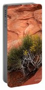 Valley Of Fire Yellow Vegetation Nevada Portable Battery Charger