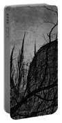 Valley Of Sticks Portable Battery Charger
