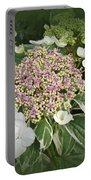 Variegated Lace Cap Hydrangea - Pink And White Portable Battery Charger