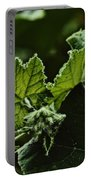 Vegetative Dragon Portable Battery Charger