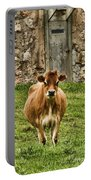 Vernon County Cow Portable Battery Charger