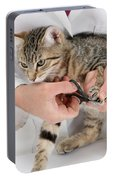 Vet Clipping Kittens Claws Portable Battery Charger